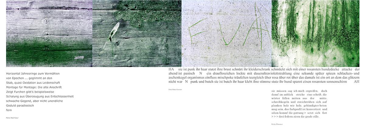 02_Lesezeichen, Betonmauer, Moos, Graffiti