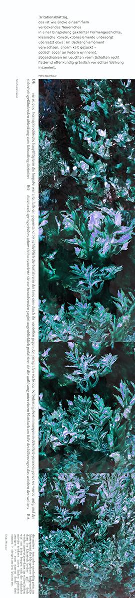 06_Lesezeichen, Wasserpflanzen