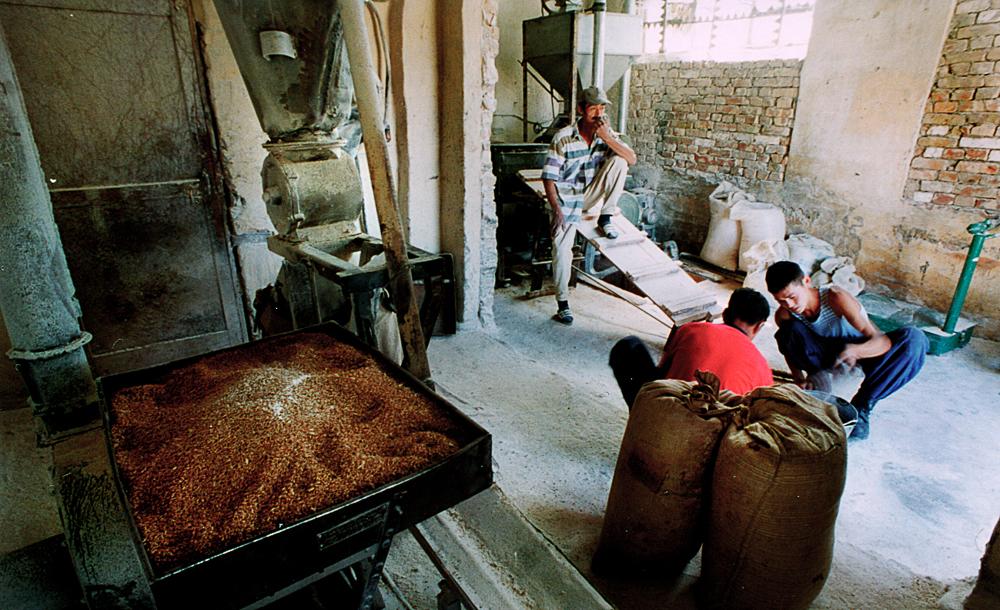 Arbeiter in Getreide Mühle